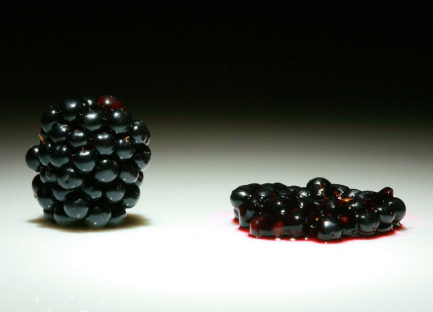 blackberry death crushed